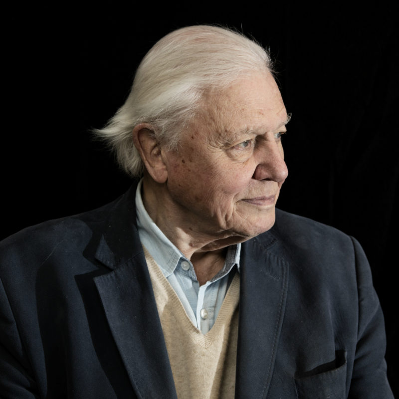 Sir David Attenborough captured by Loftus Media photographer Jamie Simonds in November 2018. © BBC
